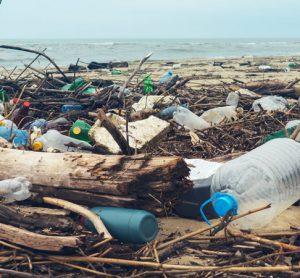 Istanbul Airport to organise environmental awareness programme