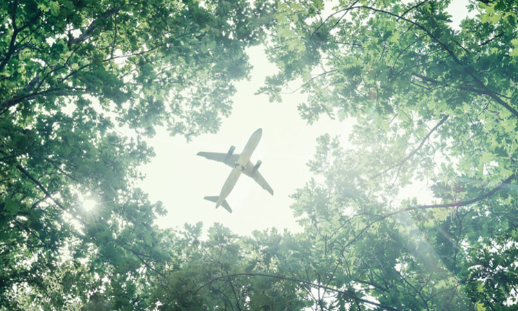 Managing airports' impact on environment key to sustainable growth